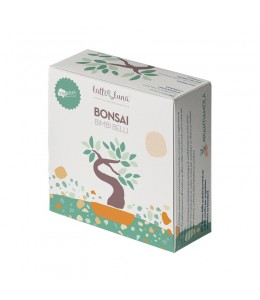 Box Regalo Bonsai - Piantiamola - Latte e Luna