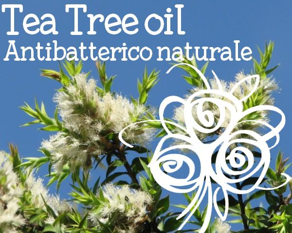Tea Tree come usarlo