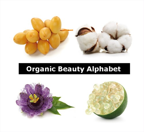 ORGANIC BEAUTY ALPHABET Delidea
